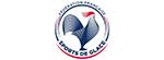logo partenaire fédération française des sports de glace